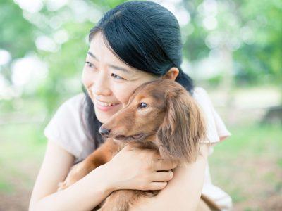 犬・猫だって大事な家族!ペット保険の内容と金額を徹底比較